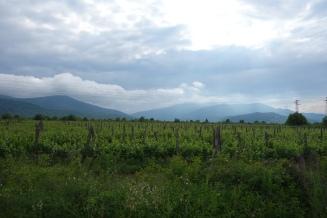 0517-Bulgarien2 (41)