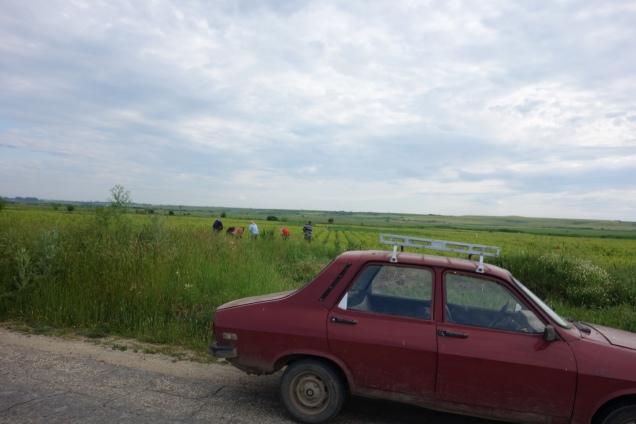 0517-Rumänien (67)