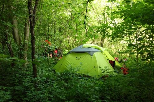 Unser Camp mitten im Dschungel