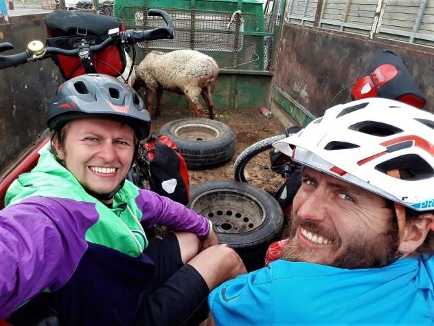 Auf dem Transporter mit den Schafen gings durch den Tunnel
