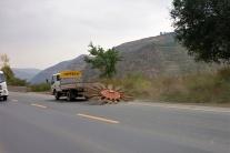 So sieht Straßenreinigung in China aus