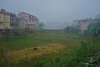 Dichter Nebel am Morgen