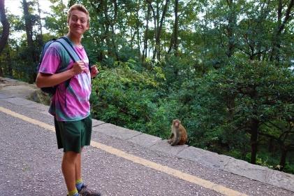 Die Affen verfolgten uns die ganze Zeit