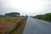 Eintönige Landschaft geparrt mit Regenwetter machen nicht so viel Spaß