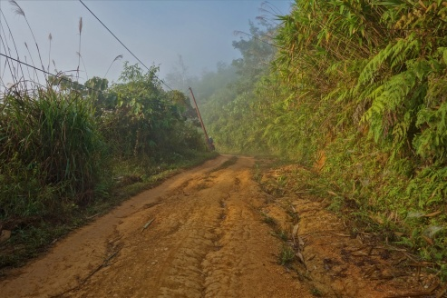 Der Nebel verschwindet so langsam am Morgen